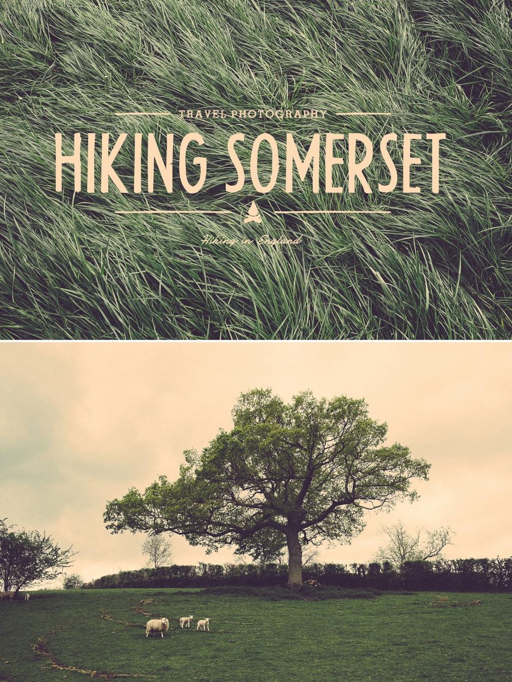 Wandern im Südwesten Englands, mit der Fuji X-T1 in Somerset