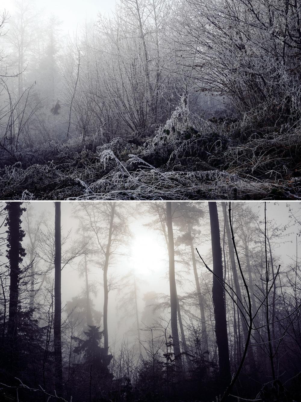 Winter wonderland, Klaus Gruber, mit der Fuji X-T2 in der Schweiz
